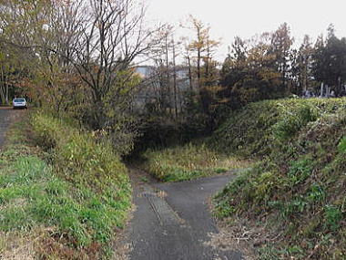 石亀館 -陸奥の城ー
