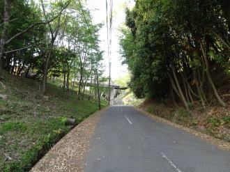 伊達吉村の画像 p1_5